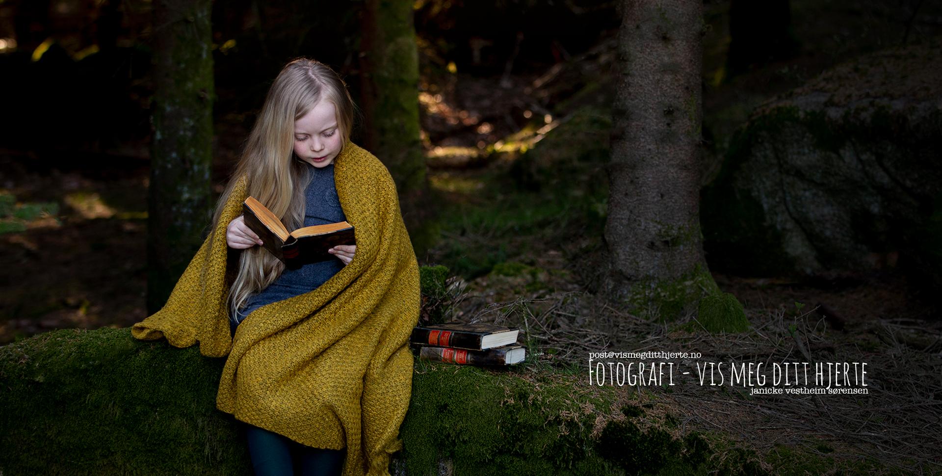 Sørlandske Fotograflaug
